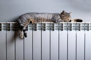 Electric Storage Heaters